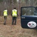 Близо 2500 проверки на ден са извършвали горските инспектори в цялата страна