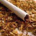 Закон! Ако въртиш далавера с тютюн, вземат ти го и получаваш присъда