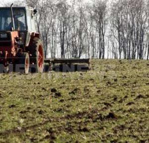 31 юли е крайният срок за подаване на декларация за ползване на земеделски земи