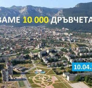 Гората.бг ще дарят 10 000 дръвчета за Враца