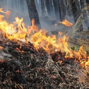 Обявиха пожароопасен сезон за всички области в страната